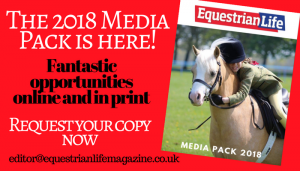 Grab your 2018 Media Pack Today 300x171 - Request a Media Pack