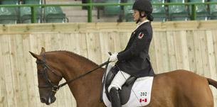 bishop burton - International Dressage in Yorkshire