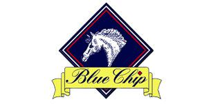 blue chip - Field House Equestrian Centre holds Blue Chip Feed Balancer Newcomer Second Round