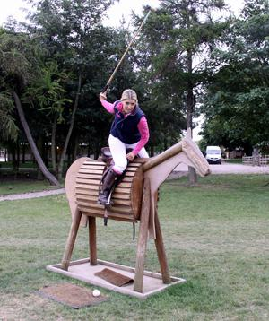 300xWooden horse - Getting to Know Tottie Polo Player
