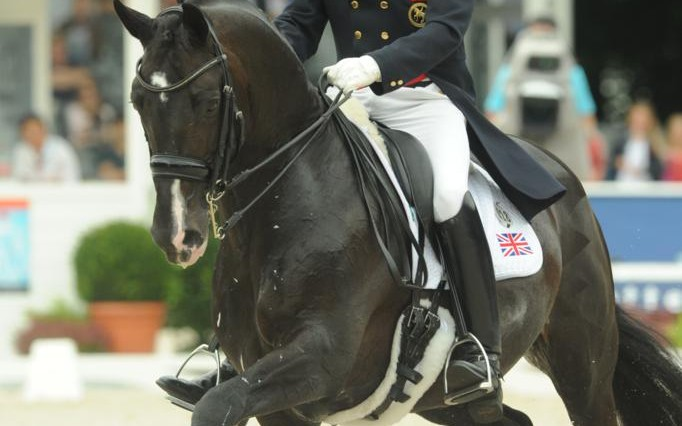 Carl Hester at The Europeans photo Kevin Sparrow 682x426 - See Gold Medal winning Carl Hester at Wembley Arena with the Spanish Riding School of Vienna