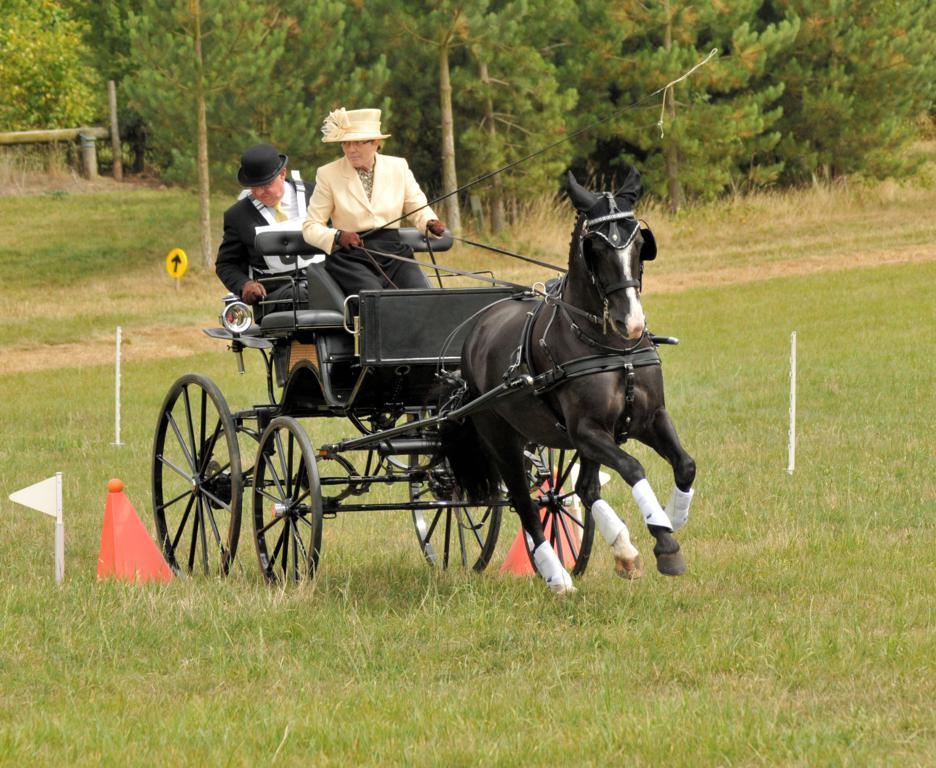 WDP 1379 2011 08 03 at 15 46 22 - Wendy Stromberg announces her retirement – and then storms to a win at Grangewood Farm