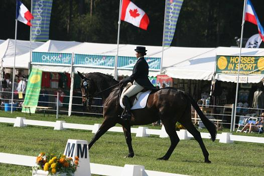 Hailea Barrett Regal Imp II in CCI one star - Records broken at Osberton 2011