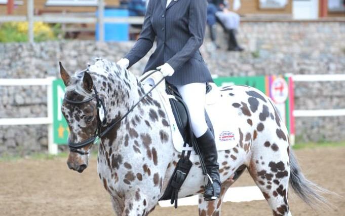 Esther Paul and Leo 681x426 - It's a close call at the Cricklands' Dressage Championships of Great Britain