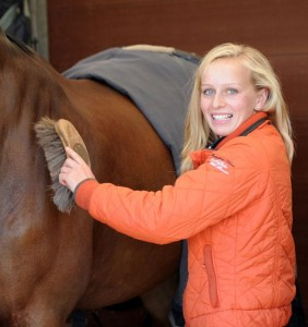brushinghorse 282x300 - WORK BASED MODERN APPRENTICESHIPS NOW OFFERED BY BRITISH SHOWJUMPING