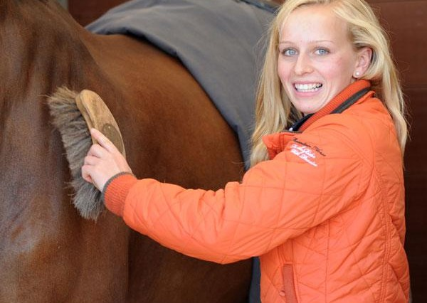 brushinghorse 600x426 - WORK BASED MODERN APPRENTICESHIPS NOW OFFERED BY BRITISH SHOWJUMPING