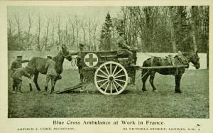 Blue Cross horse ambulance in France during First World War