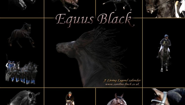 EQUUS BLACK UPDATE front cover copy 750x426 - Living Legend Dressage Calendars for 2012 available for Christmas gifts