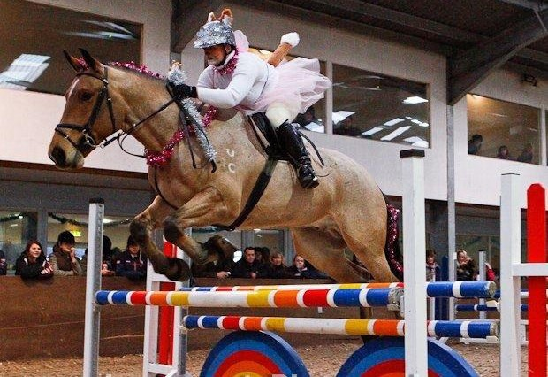 Foxy Fairy 620x426 - Quorn Hunt Christmas Show jumping report