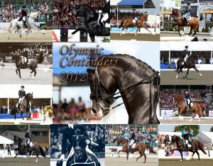 OLYMPIC CONTENDERS COVER 300x234 - Living Legend Dressage Calendars for 2012 available for Christmas gifts