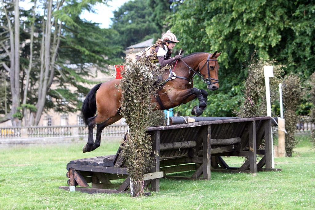 Harriet Falshaw one of the current riders sponsored by British Horse Feeds - Are you looking for Sponsorship?