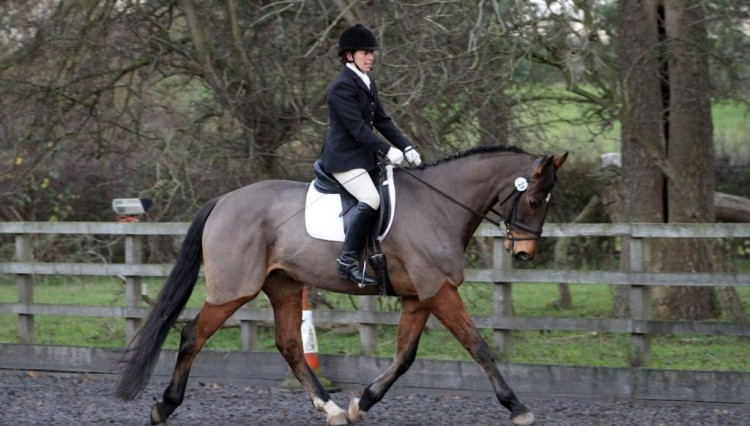 IMG 1855 750x426 - Hinckley Dressage Competition Results