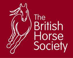 BHS Logo - NATURAL HORSEMANSHIP DEMO with GUY ROBERTSON