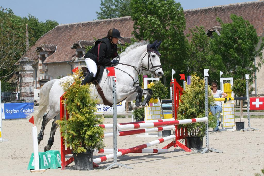 Susi Rogers Hartley jumping Seamus 2m b - Show jumper and Para-dressage rider Susi Rogers Hartley is sponsored for a second year running by RS-tor