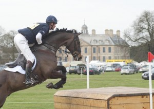 Belton William Fox-Pitt - Lionheart