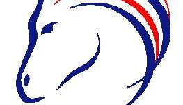 british horse feeds logo