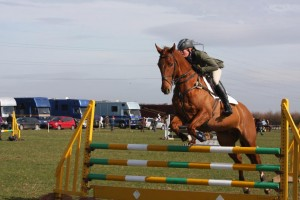 the skill of show jumping