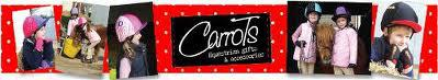 Carrots Logo1 - Packed up and ready for summer!