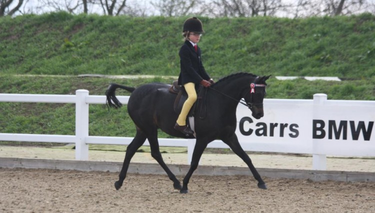Charn Secret Fairytale ridden by Frederick Welford 750x426 - BSPS Winter Championships at Arena UK