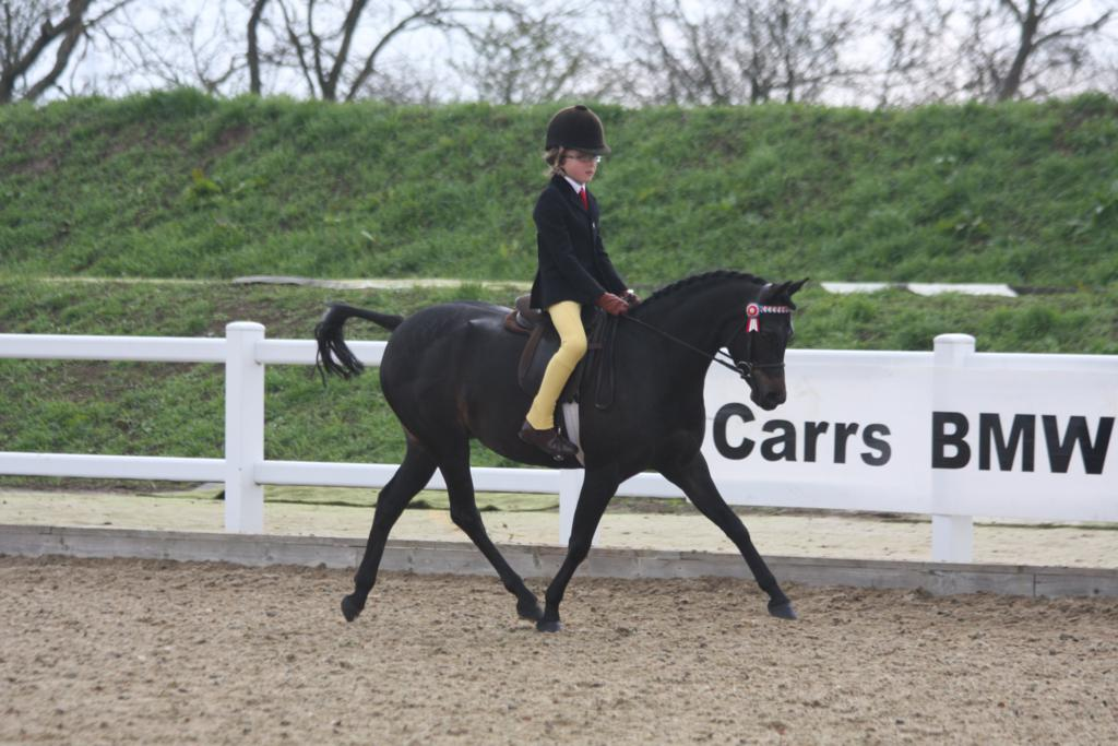 Charn Secret Fairytale ridden by Frederick Welford - BSPS Winter Championships at Arena UK