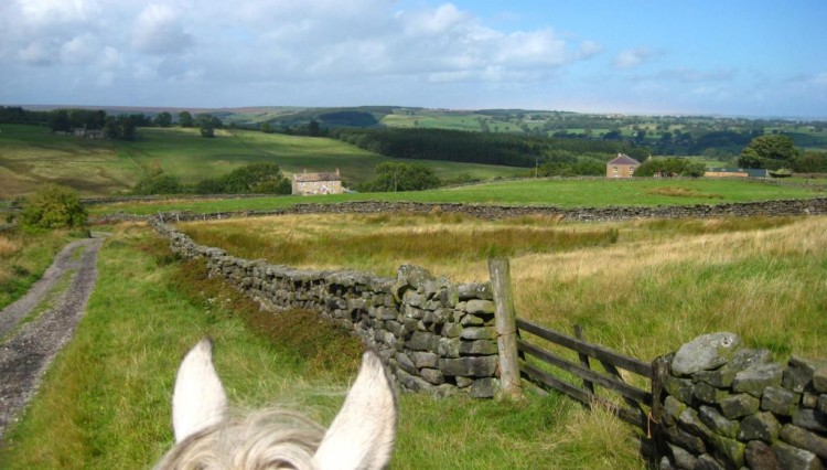 Nidderdale Sept 11 750x426 - The BHS Access week 18th - 27th May 2012
