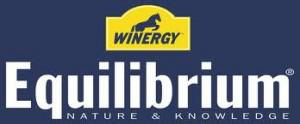 Winergy Logo