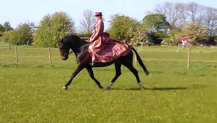 Jasmines Concours Outfit 750x426 - Jo & Kirsty Snelling's Showing Experiences