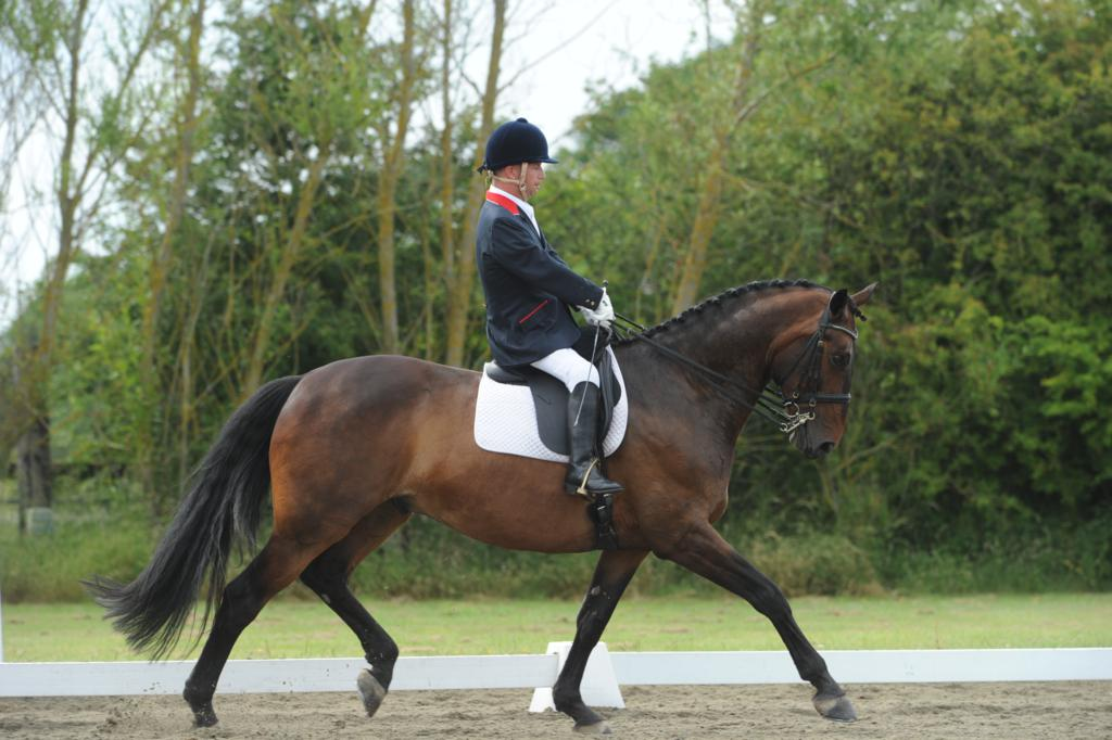 Lee Pearson.Gentleman - Boost in Support Needed for Paralympic Dressage Preparation