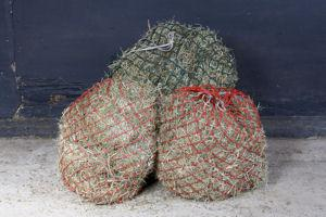 Daily ration of hay in winter small image - 'What's in your haynet?' campaign launches