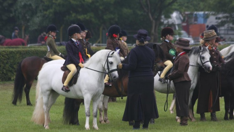 IMG 4514 750x426 - Lincolnshire County Show