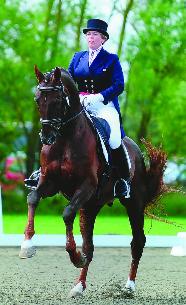 Margue H Sue Carson - New challenge for Sue Carson as 'List 1' dressage judge