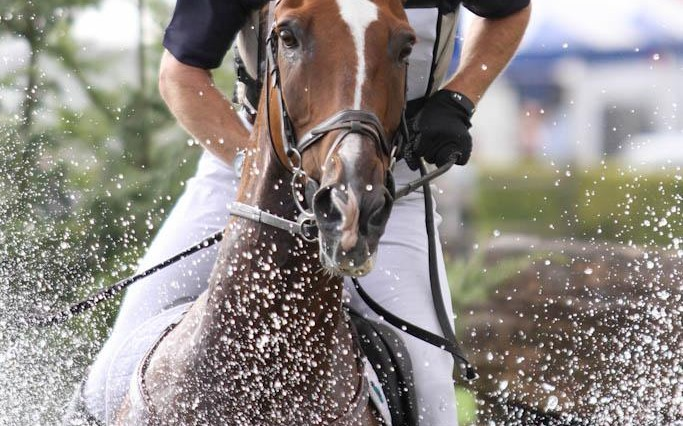 RIHS11Thurs 6071 683x426 - Can a Grand National-winning jockey Power to victory in the Amlin Plus Eventing Grand Prix?
