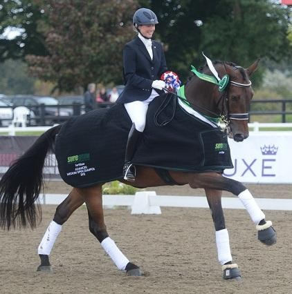 AMedium open 422x426 - National title for Olympian with upcoming home-bred horse