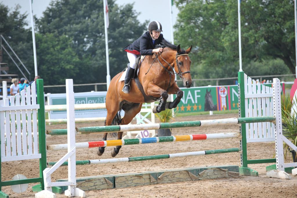 Bina Ford - Senior Amateurs qualify for HOYS and Aintree and six Championships are decided at Wales & West