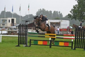 Donald Ellery 300x200 - Senior Amateurs qualify for HOYS and Aintree and six Championships are decided at Wales & West