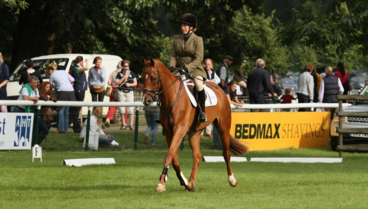 IMG 0294 750x426 - E.Z. Equestrian look to the stars after Parkfield Quintessential dazzles at Burghley