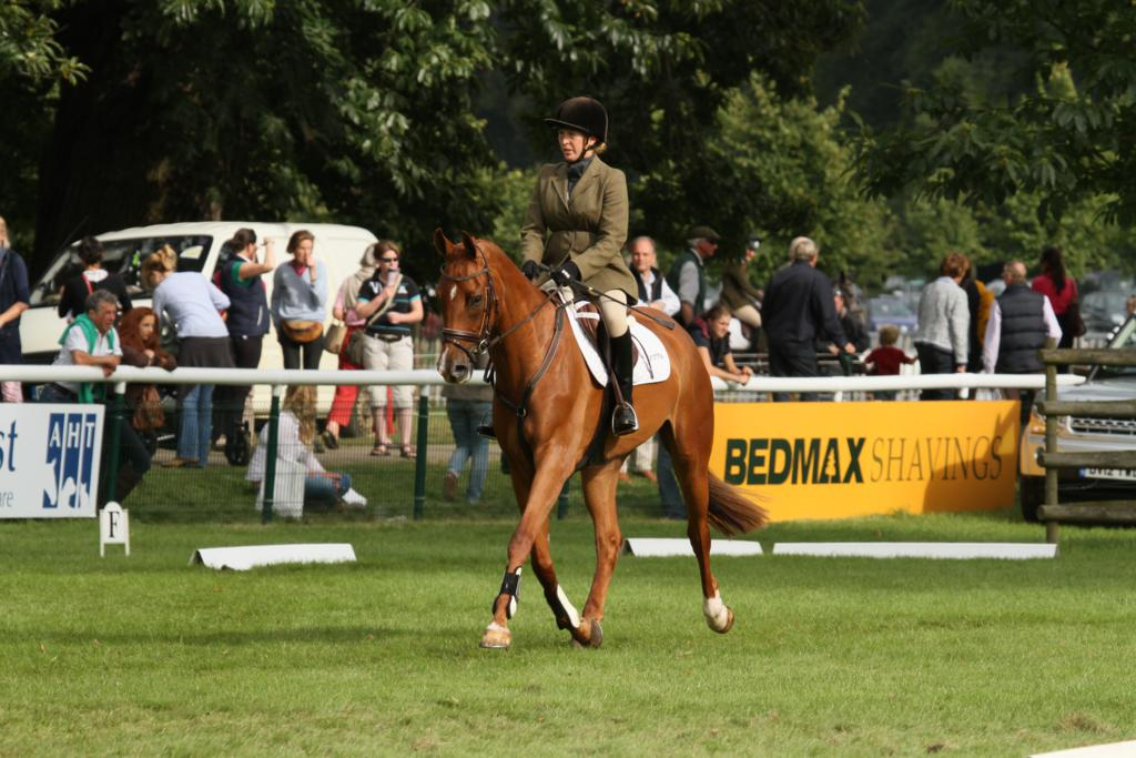 IMG 0294 - E.Z. Equestrian look to the stars after Parkfield Quintessential dazzles at Burghley