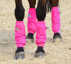 Pink Golly Galoshes photo Throughbred Sports Photography