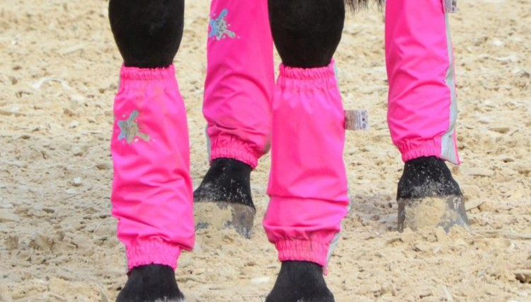 Pink Golly Galoshes photo Throughbred Sports Photography 750x426 - BE SEEN IN STYLE!