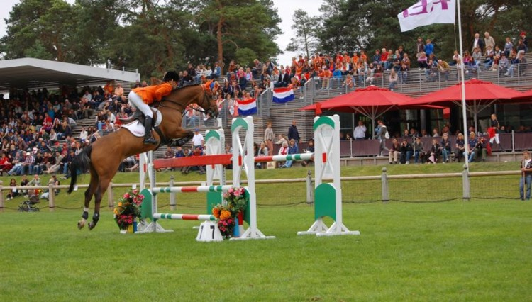 rock dee jay IndSilverPonyEurosCreditSPSSlr 750x426 - Successful British Bred Ponies in 2012