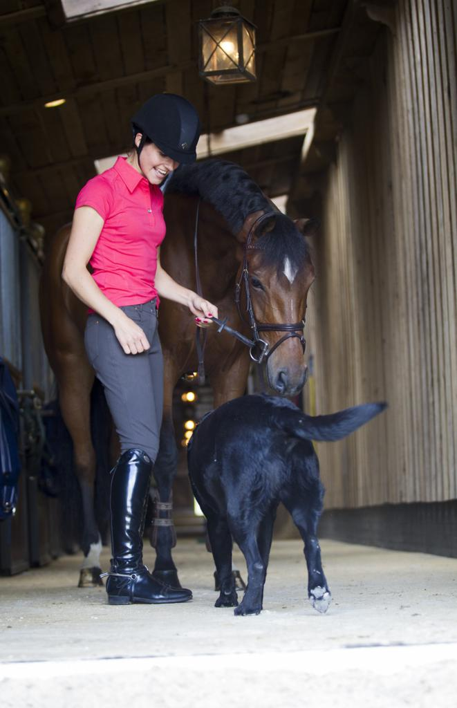 shortsleevesm - Equirex brings earth conscious equestrian sportswear to the UK