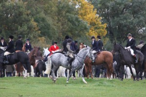 IMG 7889 300x200 - An exceptional meet of the Quorn
