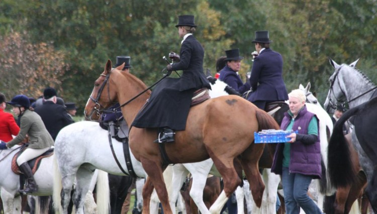 IMG 7891 750x426 - An exceptional meet of the Quorn