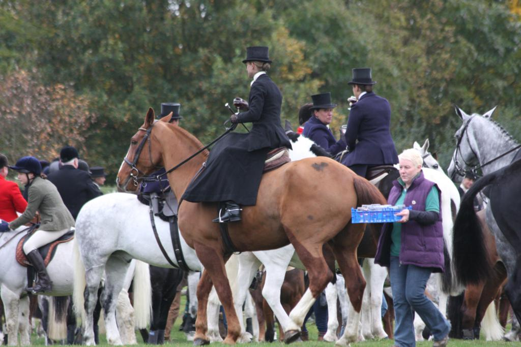 IMG 7891 - An exceptional meet of the Quorn