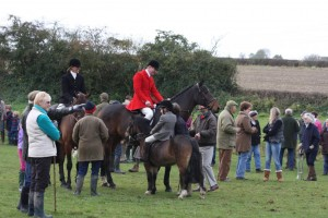 IMG 7949 300x200 - An exceptional meet of the Quorn