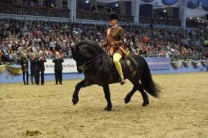 London International Horse Show -Olympia 2011