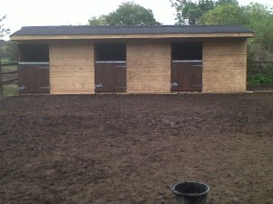 Moo-Haven's new stables