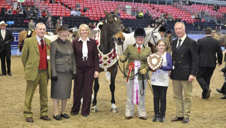 VeteranOLYMPIA11kh  0382. LR 750x426 - The Veteran Horse Showing and Dodson & Horrell Show Championships at Olympia