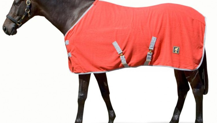 DH Standard Fleece 750x426 - Check out this EXCLUSIVE offer from DERBY HOUSE
