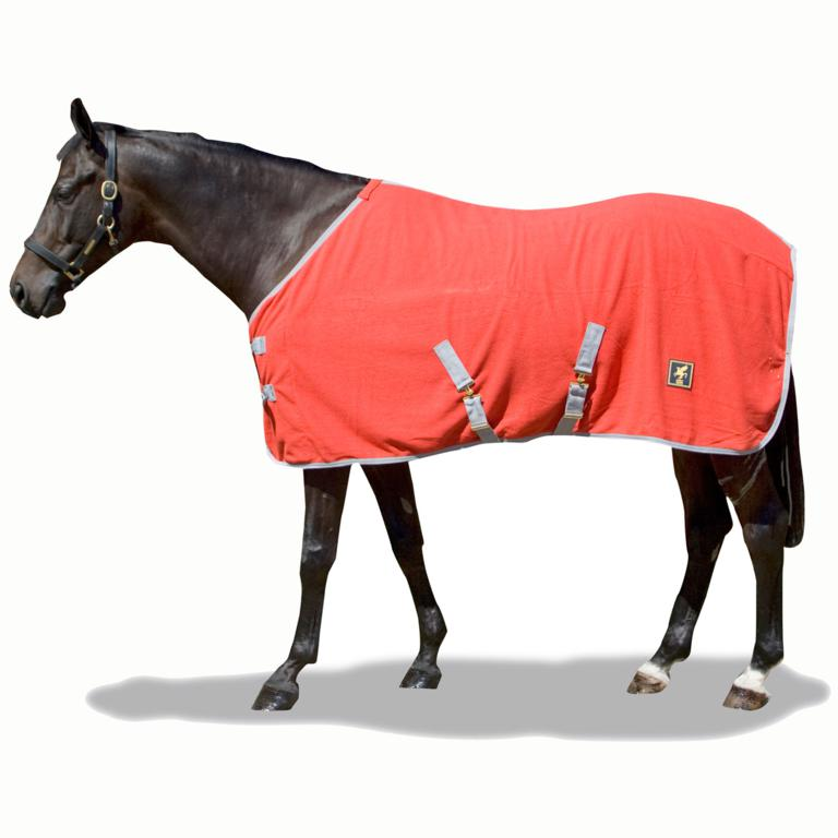 DH Standard Fleece - Check out this EXCLUSIVE offer from DERBY HOUSE